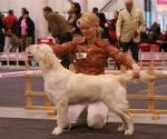Citronella Made Prima Santolina, best puppy 2009
